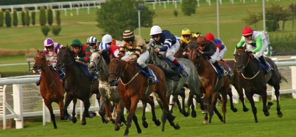 como assistir a corridas de cavalos ao vivo e grátis