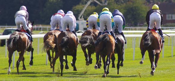 Aprenda a apostar em corridas de cavalos