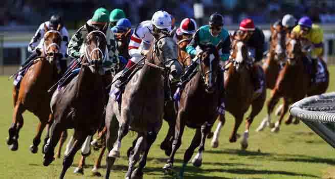 Apostas progressivas nas corridas de cavalos