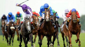 Apostas em corridas de cavalos com Win ou Place