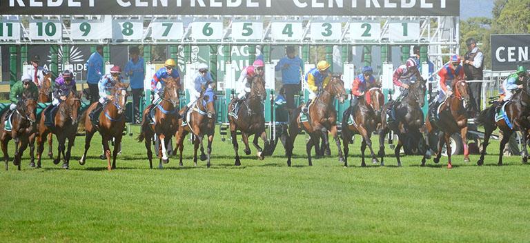 Tipos de apostas em corridas de cavalos