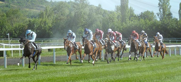 Apostas em corridas de cavalos Brasil